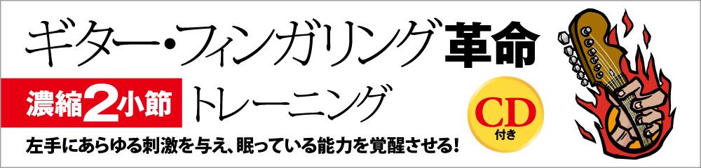 ギター・フィンガリング革命 大バナー