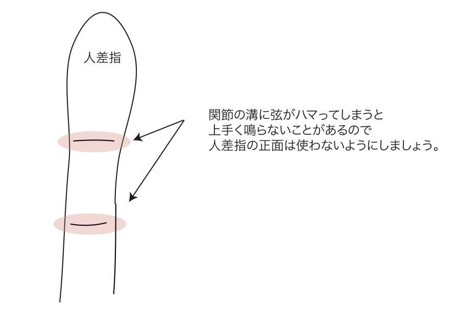 指の腹 のコピー.jpg
